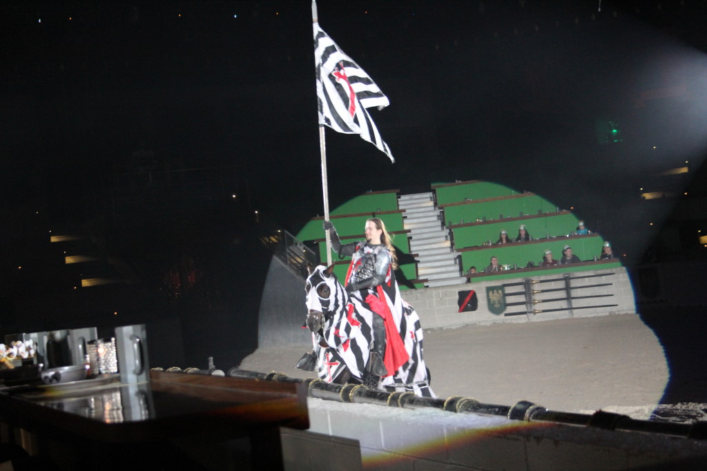 Fun for the Whole Family at Medieval Times Schaumburg