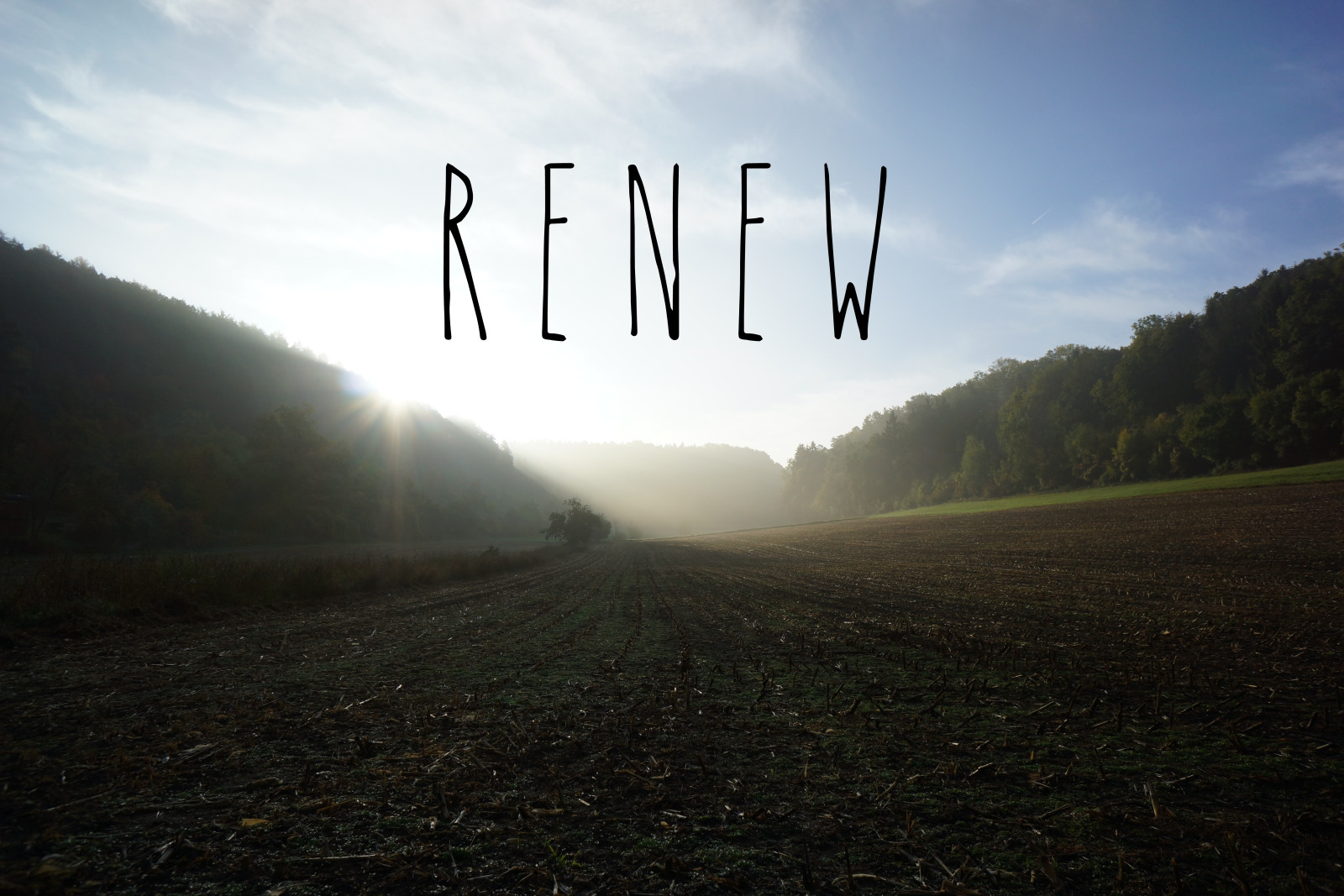 Renew is My Word for 2016 (PLUS Don't Miss the $500 Amazon Giveaway)
