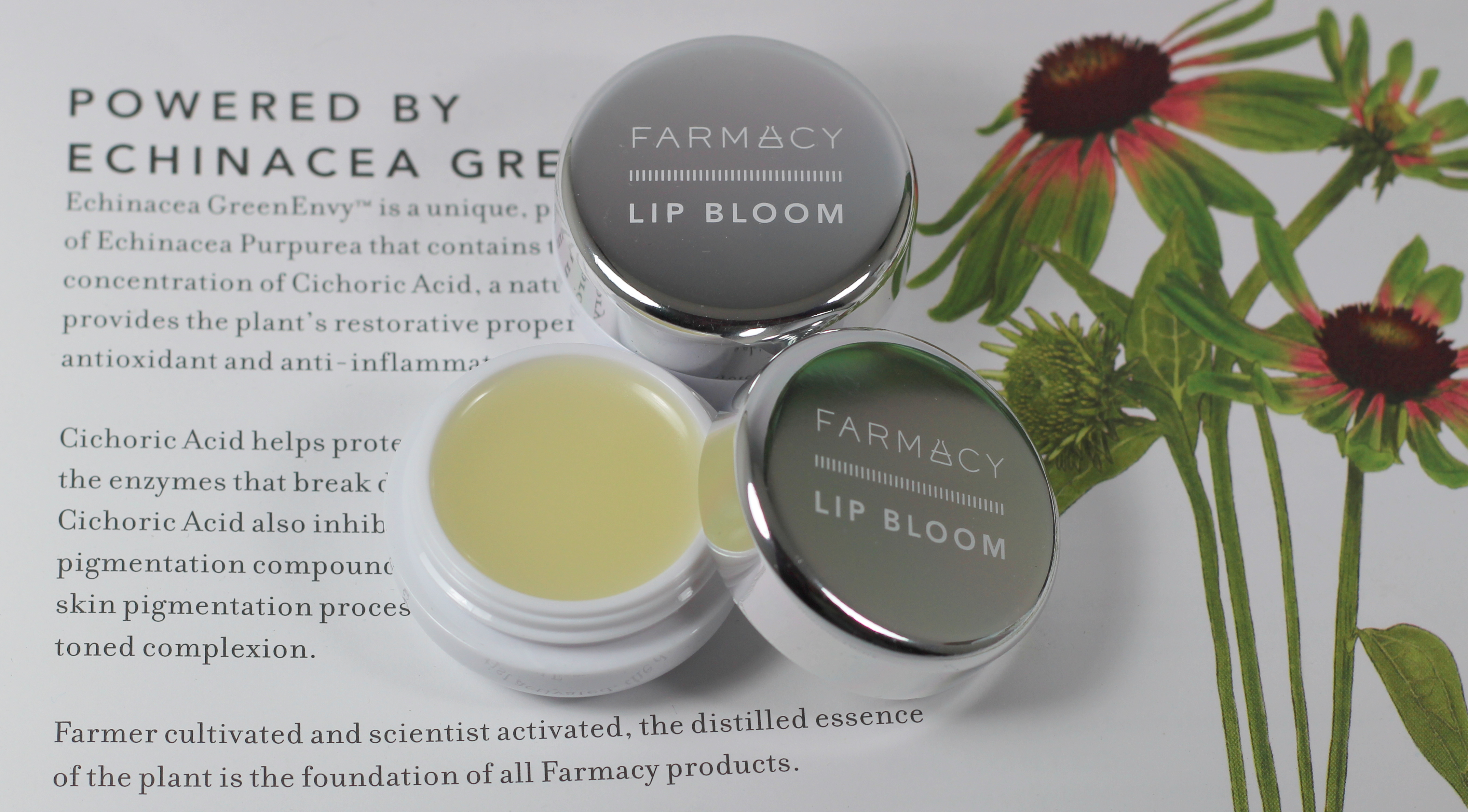 Review Farmacy Lip Bloom Citrus Lemongrass